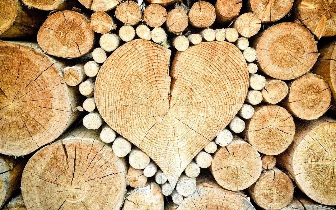 Das Herzstück deiner Rede: der Hauptteil